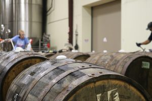 Brown wooden whisky barrels